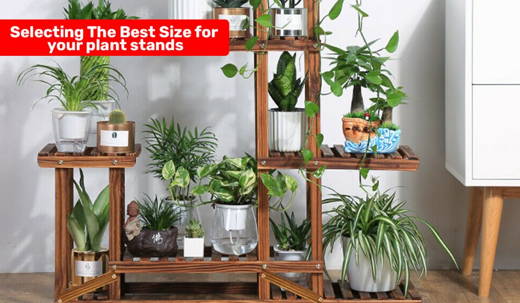 Plant-Stands